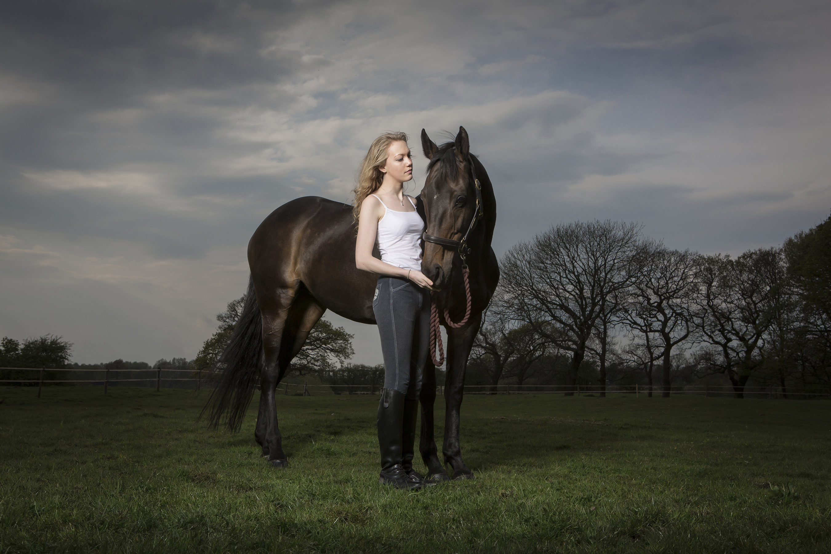 equine-photography2