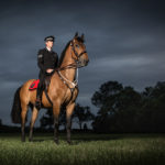 Lancashire Mounted Branch Photography